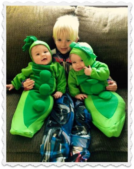 november Maddix, Lilly, & Bella
