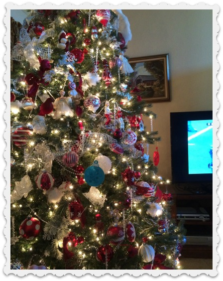 Thanksgiving nov 26 - tree